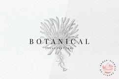 Premium Botanical Illustrations - Plants Product Image 1