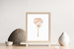 Boho rose printable, Digital rose poster, Floral wall print Product Image 2