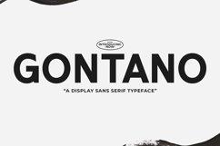 Web Font Gontano Product Image 1