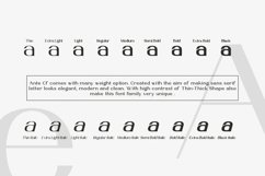 Ante Cf Font Family Product Image 2
