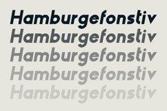 HAUS Sans Extra Bold Product Image 3