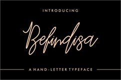 Befindisa Product Image 1