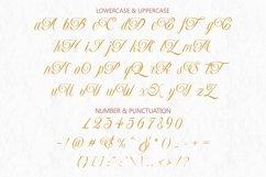 Monaveen Luxia - Luxury Calligraphy Font Product Image 10