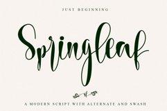 Springleaf Product Image 1