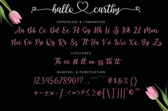 Hallo Carthy | A Lovely Calligraphy Font Product Image 4