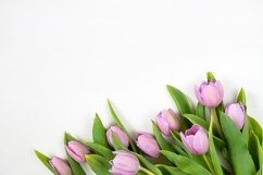 Spring background with tulips. Mother's day holiday concept. Product Image 1
