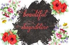 Shayndeline Product Image 4