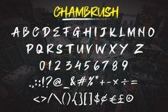 CHAMBRUSH Product Image 4