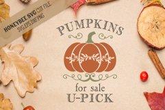 Pumpkins For Sale U-Pick svg Product Image 1