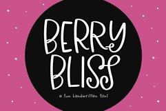 Berry Bliss - A Fun Handwritten Font Product Image 1