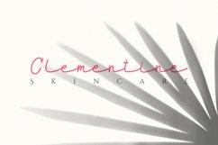 Maidenhair   Monoline Web Font Product Image 6