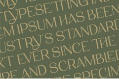 Stigma - Display Serif Font Product Image 6