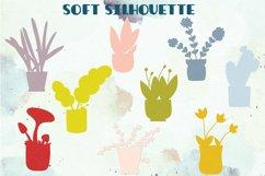 House Plants Color, Cactus, Flower Pot, Hanging Indoor Plant Product Image 5