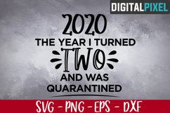 This Year I Turned 2 And Was Quarantined SVG, 2nd Birthday Product Image 1