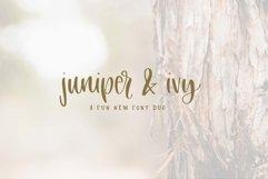 Juniper & Ivy Product Image 1
