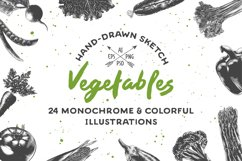 Collection of hand-drawn vegetables Product Image 1