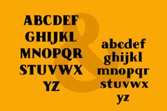 Tesson Black Serif Product Image 4