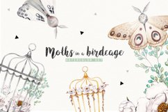 MOTHS and BIRDCAGE watercolor set Product Image 1