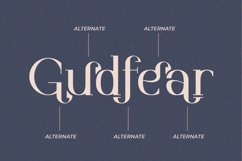 Gudfear - Modern Serif Font Product Image 2