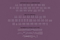 Web Font Scratchy Font Product Image 3