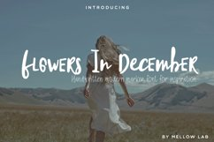 Flowers In December Font Duo Product Image 1