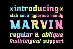 Marvin Regular & Oblique Product Image 1