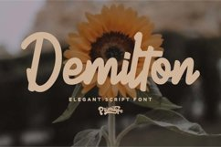 Demilton Product Image 1