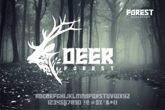 FOREST display font Product Image 3