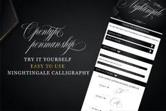 Nightingale Product Image 5