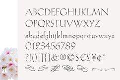 Hellen - Serif Font Product Image 3