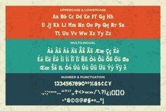 Web Font American Native Font Product Image 3