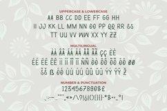 Web Font Brasileira Font Product Image 3