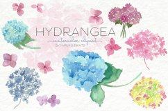 Watercolor Clip Art - Hydrangea Product Image 1