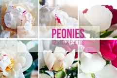 Bouquet of beautiful white and pink peonies Photo Bundle Product Image 1