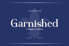 Web Font Garnished Product Image 1