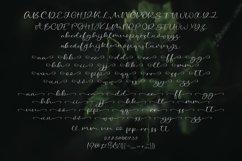 Web Font Honey & Mint Script Font Product Image 4