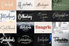 Magnificent Gorgeous 210 Fonts Bundle Product Image 4