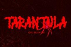 TARANTULA Product Image 1