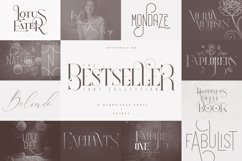 The Bestseller Font Collection Product Image 1