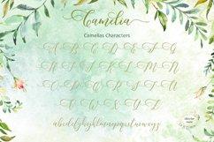 Butterflies Script Product Image 2