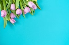 Spring background with tulips. Product Image 1