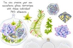 Succulents terrarium creator Vol.2 Product Image 2