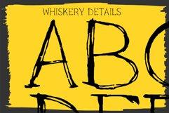 Black Cat Whiskers - Mini Serif Font Product Image 6