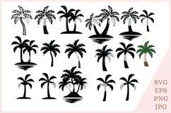 Palm Tree svg, Tropical svg, summer svg Product Image 1