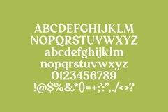 Decors - a decorative serif font Product Image 5