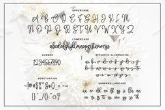 Web Font Amellia Product Image 2