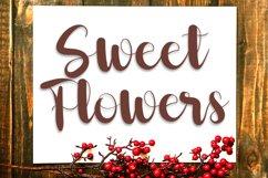 Chocolate - Smart & Beauty Font Product Image 4