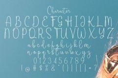 Web Font Tomago Script Product Image 2
