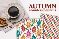 7 Autumn patterns Product Image 1