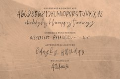 Jandariya | Handwritten Script Font Product Image 5